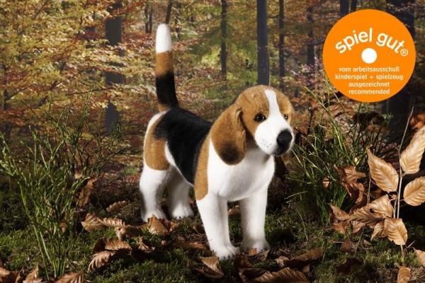 Kösen Beagle, 34cm Spielzeug