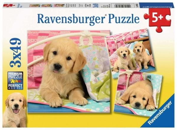 Ravensburger Spiele Kuschelige Hündchen 3 X 49 Teile Spielzeug