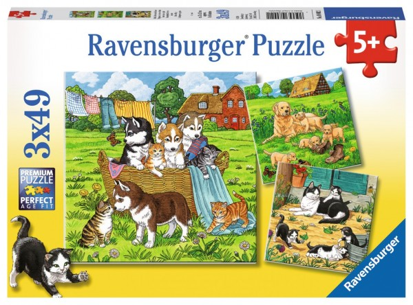 Ravensburger Puzzle Süße Katzen und Hunde 3 X 49 Teile Spielzeug